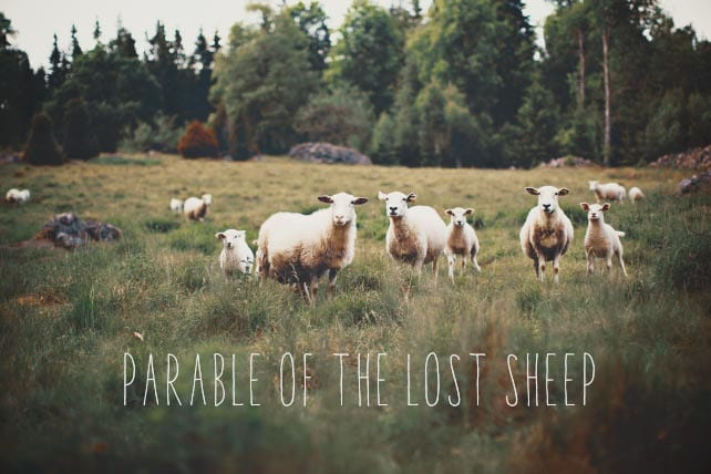 Parable of the Lost Sheep • ChurchLeaders.com