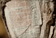 Ground Zero Bible