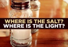 Where Is the Salt? Where Is the Light?