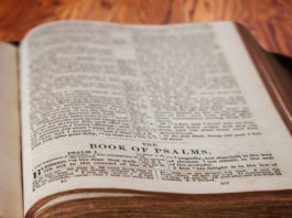 how to read the Psalms