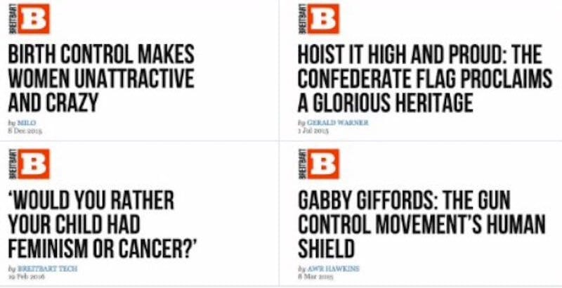 breitbart-article-5
