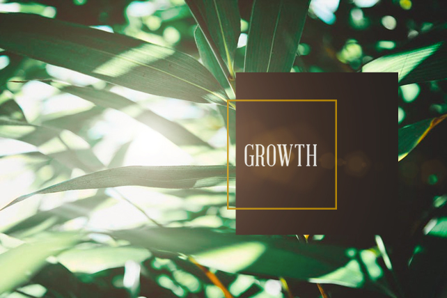 5 Church Growth Essentials From the Apostle Paul