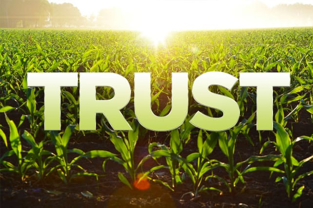5 Ways to Grow a Culture of Trust