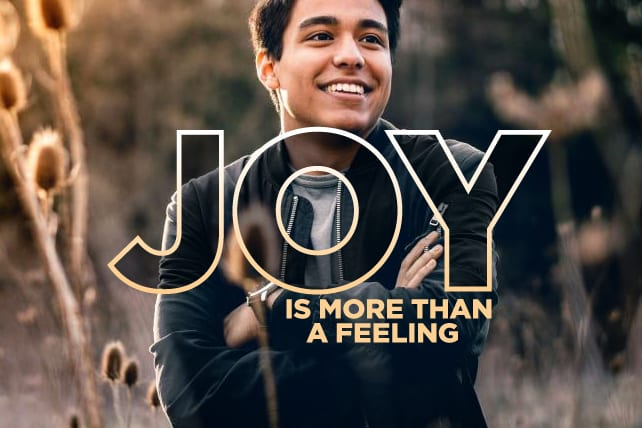 Joy Is More Than A Feeling