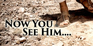 Now You See Him....