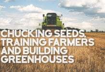 Chucking Seeds, Training Farmers and Building Greenhouses