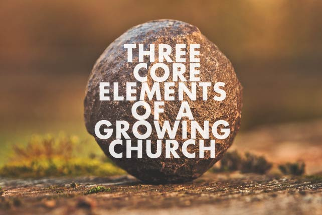 Core Elements of a Growing Church