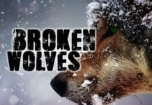 Beware of Broken Wolves