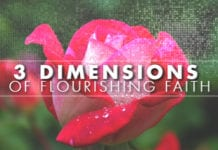 3 Dimensions of Flourishing Faith