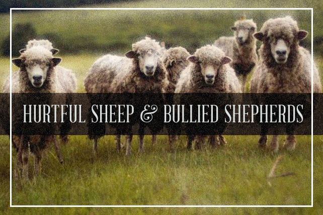 Hurtful Sheep and Bullied Shepherds