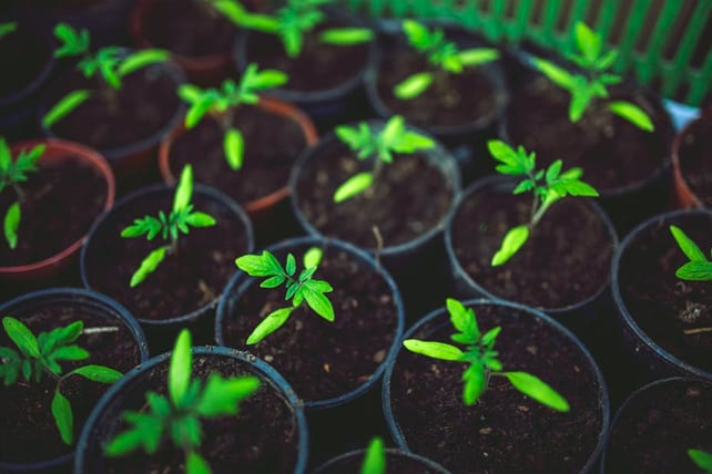 9 Ways Your Church Can Help Your Pastor Continue to Grow