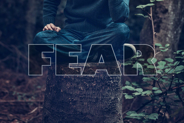 Safe, Comfortable, and Unhappy: Finding Life by Overcoming Fear