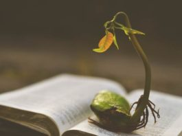 How to Experience a Breakthrough in Your Church's Growth