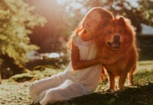 """animals in heaven """"Mommy, Do All Dogs Go to Heaven?"""""""