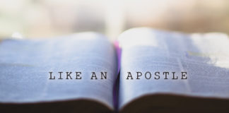 How to Read Scripture Like an Apostle