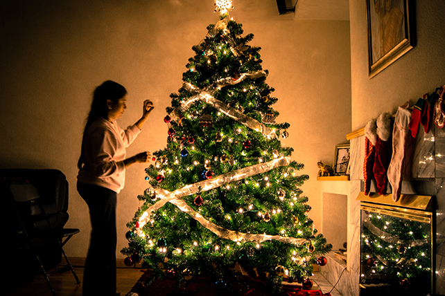 Make the Most of Your Christmas Tree
