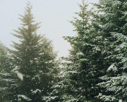 5 Ways to Break Through a Growth Barrier This Christmas
