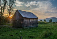 Discipleship The Lord Takes His Churches to the Woodshed