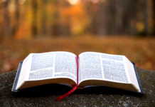 Are the Bible and Science at Odds?