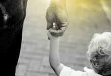 Childhood 4 Truths for Grandparents to Embrace