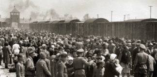 how many Jews died in the Holocaust