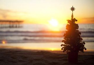 Free Christmas Graphic: Beach Christmas Tree